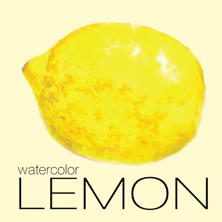 Hand drawn watercolor painting lemon on white background. Vector illustration