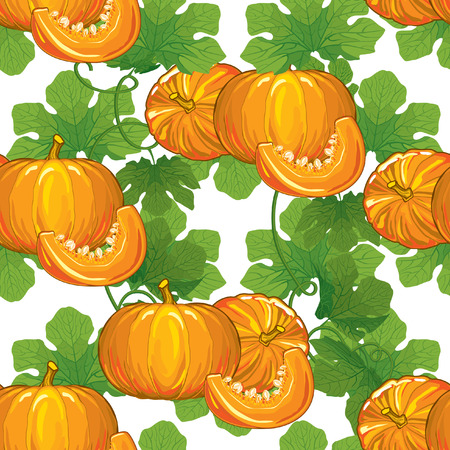 pumpkin seeds: seamless pattern of ripe pumpkins with leaves and pumpkin slices with seeds on a white background