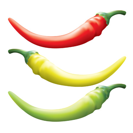 poignant: Hot chili pepper. Vector set of different color and isolated on a white background