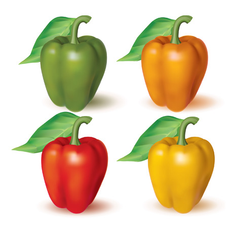 photo realistic: Bell peppers. Photo realistic set of different color. Vector illustration.