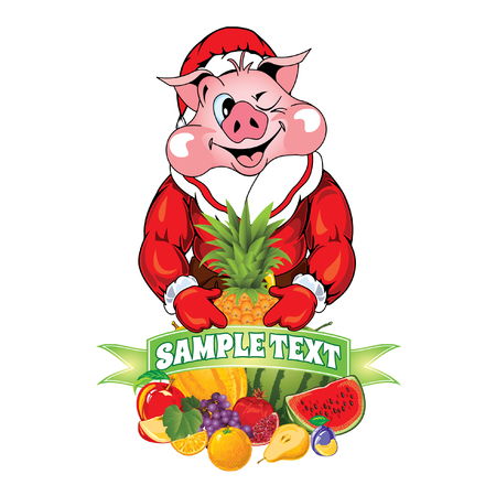 Vector illustration of Santa Claus with a fruit