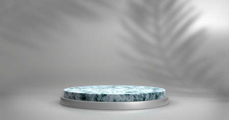 Minimalistic showcase with empty space. Empty marble podium for display product. 3D rendering. 版權商用圖片
