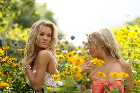 tousled: Two sexy young blonde women with tousled hair standing looking at each other chest high in yellow flowers Stock Photo