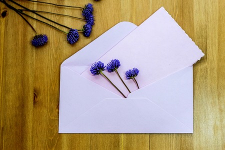 envelop: Wild purple meadow flowers with pink envelop on wooden background. Flat lay. Top view.