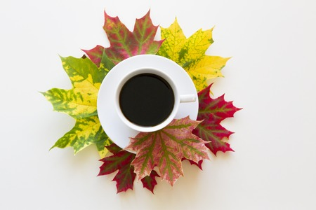 Cup of coffee, framed with autumn leaves on white background. Flat lay. Top view Stock Photo
