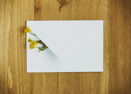 envelop: Wild meadow flowers with white envelop on wooden background. Flat lay. Top view.