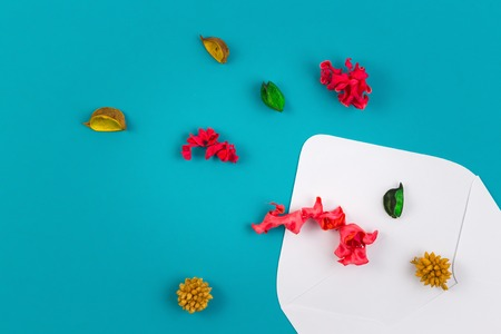 White envelop and colorful dried flowers, plants on blue background. Top view, flat lay Stock Photo