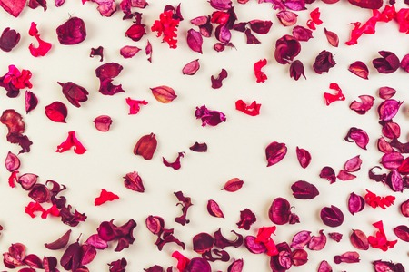 Dried flowers, petals and plants composition as pattern on white background. Top view, flat lay.