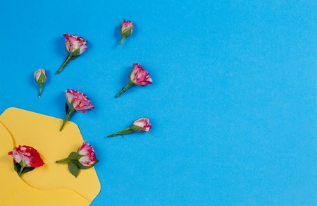 Yellow envelope and rose flowers on blue background, top view