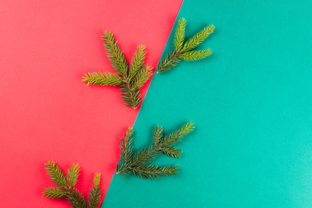 Fir tree branch on red and green background. Xmas composition