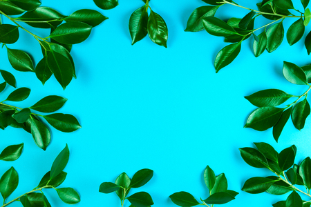 Green tree leaves frame with blue background