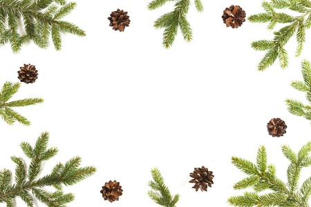 Christmas background with fir branches and pine cones on white background