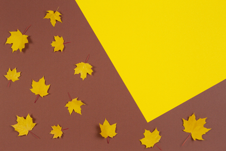 Autumn composition. Frame made of autumn maple leaves on brown and yellow background