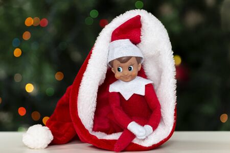 Christmas toy elf in santa hat with christmas tree background