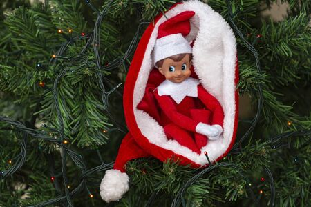 Christmas toy Santa elf in Santa hat with Christmas tree background