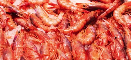 Top view to shrimps on display on ice in fisherman market store in Spanish market.