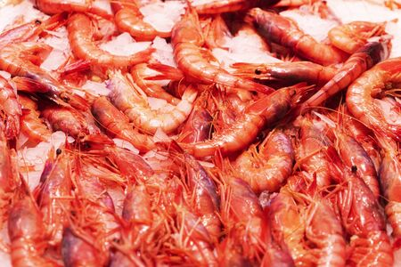 Top view to shrimps on display on ice in fisherman market store in Spanish market 写真素材 - 137803829