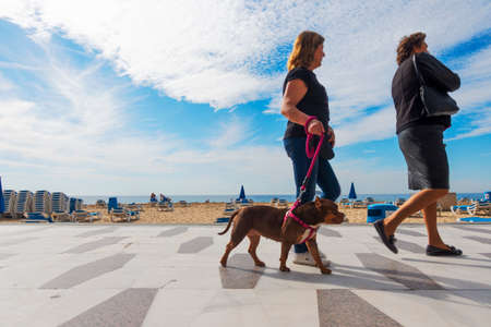 Benidorm, Spain - February 25, 2020: Women with dog walking on a sunny day in Levante beach area in popular spanish resort Benidorm, Alicante, Spain