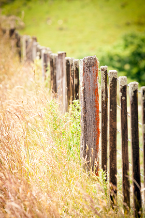 Weathered timber and wire fence with green grass paddocks New Zealand