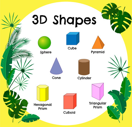 Vector 3d shapes.Educational poster for children.set of 3d shapes. Isolated solid geometric shapes. Cube, cuboid, pyramid, sphere, cylinder, cone, triangular prism, hexagonal prism. Jungle theme
