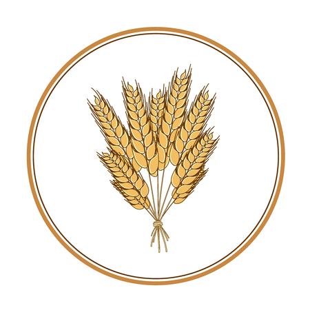 wholemeal: Wheat icon design element. Vector. Isolated illustration Illustration