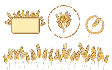 at the bottom of: Bottom page wheat field, wheat frame and icon. design elements. Illustration