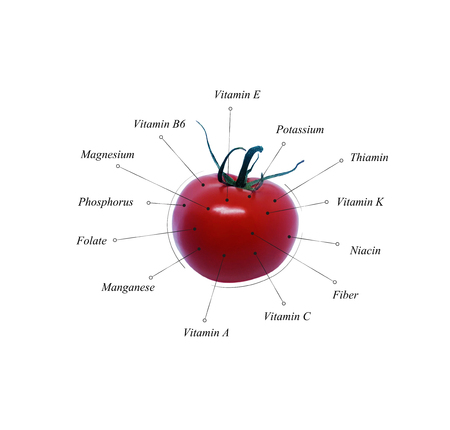 Tomato nutrients. Vegetable information. Illustration. Healthy diet Stock Photo