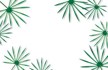 Bella cornice per social media con foglie di palma. Modello pubblicitario. Illustrazione vettoriale Vettoriali