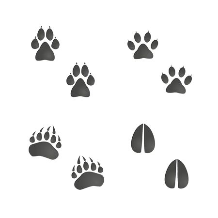 Animals footprint set: cat, dog, bear paw, deer hoof. Isolated illustration graphic vector Vettoriali