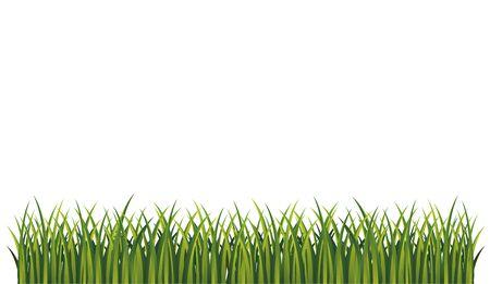 Green grass bottom page panorama frame vector pattern. Fresh summer grass. Graphic illustration. grass frame