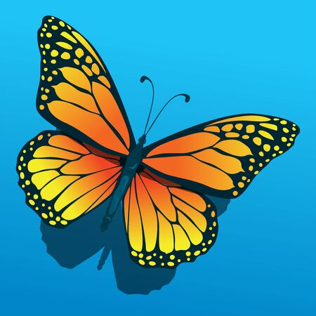 isolated butterfly flying diagonal icon with shadow below clean simple illustration Фото со стока - 127410446