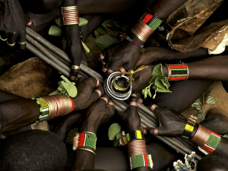 animal ritual:  Bull Jumping Ceremony - Ethiopia, Africa
