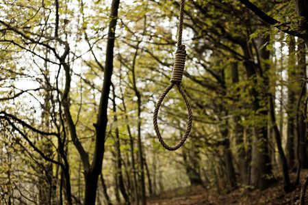 Hanging Noose at the wood. 02.11.2014 Czech Republic