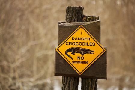 interdiction: crocodiles de danger, aucun signe de natation Banque d'images