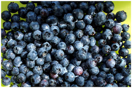juicy tasty blueberries close-up