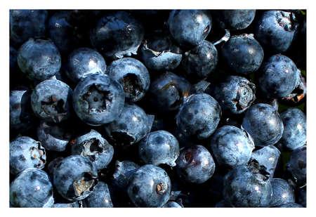 juicy bright tasty blueberries close-up 免版税图像