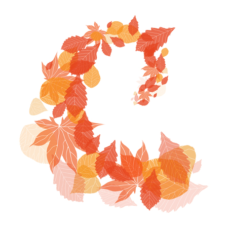 curl whirlpool: Illustration with whirlpool autumn leaves for your creativity Illustration