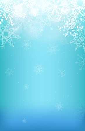 the snowflake: Winter background with snowflakes, sparkles and blurred background for your creativity