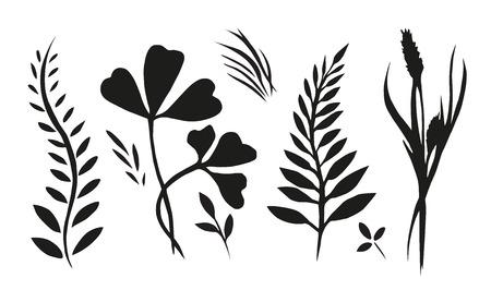 Set mit Pflanzen, Kräutern und Gräsern gemalt Tinte für Ihre Kreativität