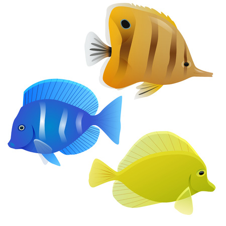 trigger fish: Set of tropical fish. Vector element for your design.
