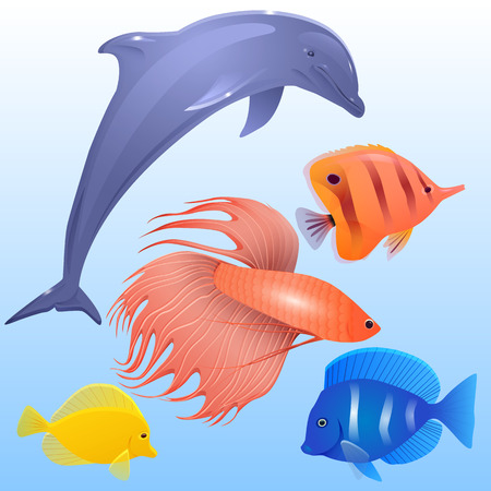 gills: Vector set of tropical fish, dolphins and fish-rooster for your creativity Illustration