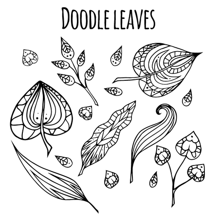 Set of black and white doodle leaves with pattern. element for your design. Illustration