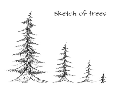 tree line: Pencil sketch of trees of different sizes. Vector element for your design Illustration
