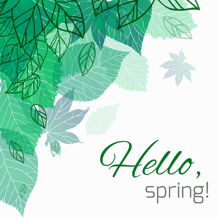 green banner: Spring vector card with doodle and green leaves for postcard, flyers, brochures and your business Illustration