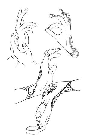 female hands: Set of contours female hands in different poses. Vector element for your creativity