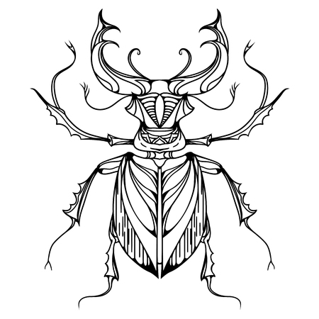 stag beetle: Hand drawn vintage stag beetle. Insect with doodle pattern. Vector element for tattoo sketch, printing on T-shirts, postcards and your design