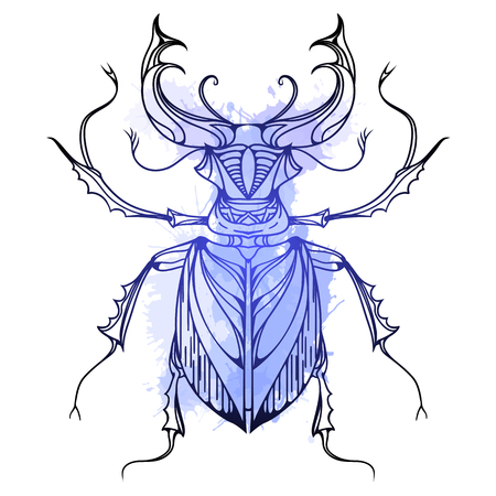 stag beetle: Hand drawn vintage stag beetle with blue watercolor splashes. Insect with doodle pattern. Vector element for tattoo sketch, printing on T-shirts, postcards and your design