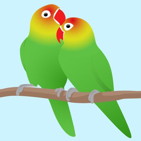 Vector illustratie van de tortelduifjes papegaaien. Liefde. Paar vogels.