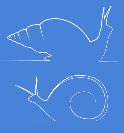 dna smile: Line illustration of snail Achatina and snail Marisa. Vector element for logos, banners and infographics Illustration