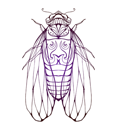 Illustration cicada  with boho pattern. Vector element for coloring prints, for T-shirts, tattoos and a sketch for your creativity